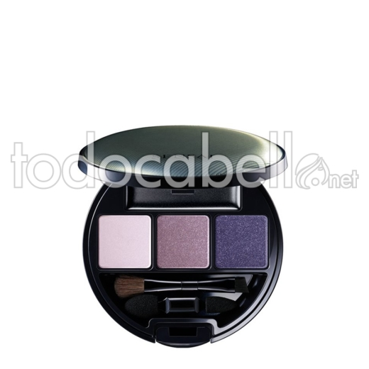 Kanebo Eye Shadow Palette Es11