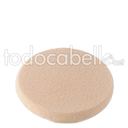 Kanebo Foundation Sponge For Sensai