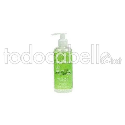 Gel Aloe Puro Fm 250ml